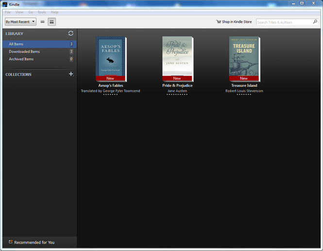 pc ebook reader with dictionary
