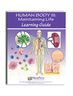 body for life ebook download